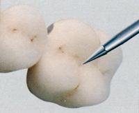 Αποτέλεσμα εικόνας για TC850.3 edenta